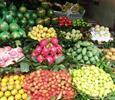 Xuất khẩu trái cây sang Trung Quốc thực chất là